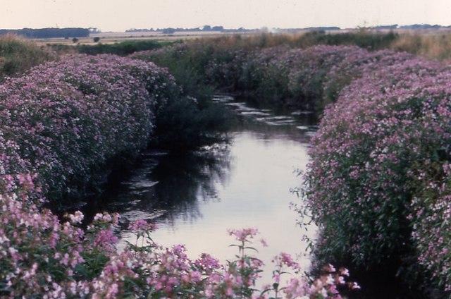 River Alt at Sefton