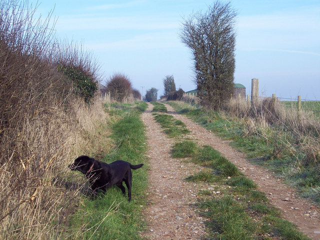 Byway near Tottons Down Barn