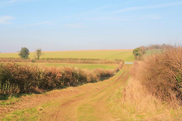 Dog-leg in footpath east of Tufton Warren Farm
