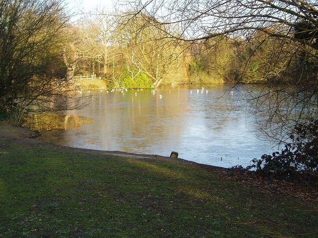 Danbury Lakes - Middle Lake