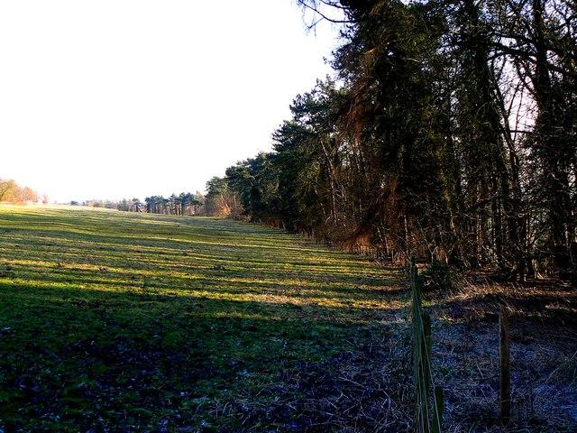 A view south-east from Maisey Farm, near Marlborough