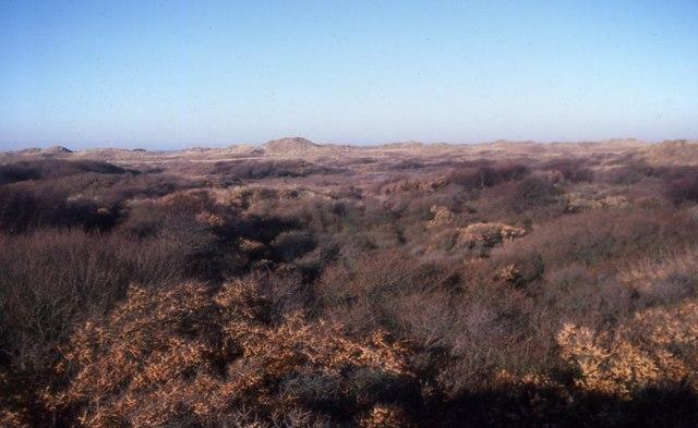 Birkdale dunes