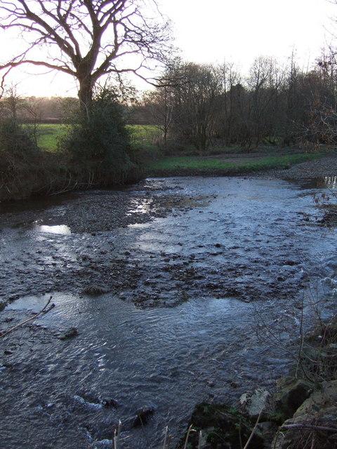 River Lew below Rutleigh