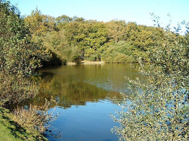 Eyeworth Pond, Fritham
