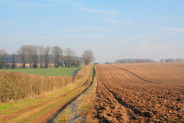 Byway east of Tufton Warren Farm
