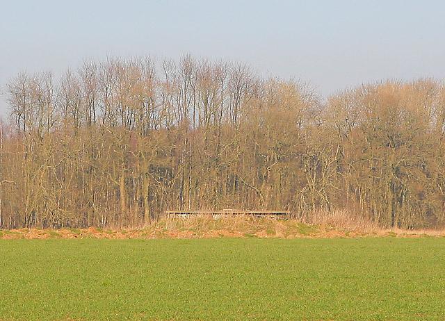 Unknown structure southeast of Brickkiln Wood
