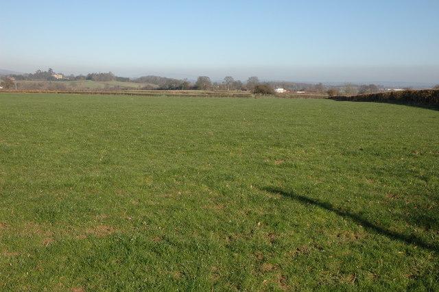 Farmland to the east of Henwood Wood