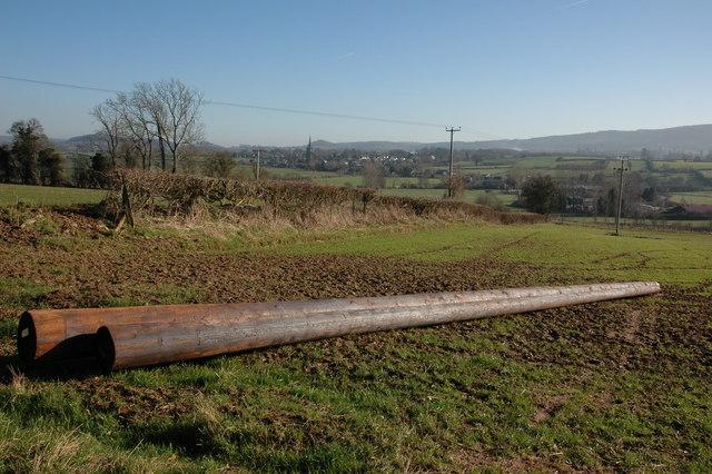 New electric poles near Acresfield, Weobley