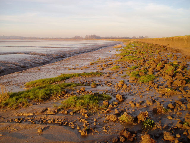 Mudflats near Frampton-on-Severn