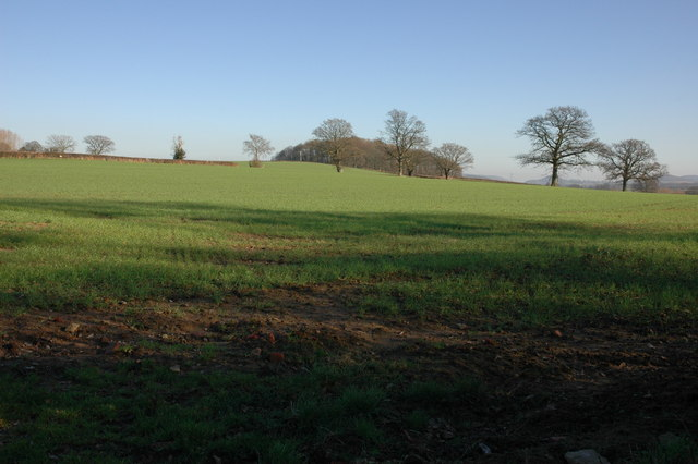 Farmland opposite The Birches, Sarnesfield