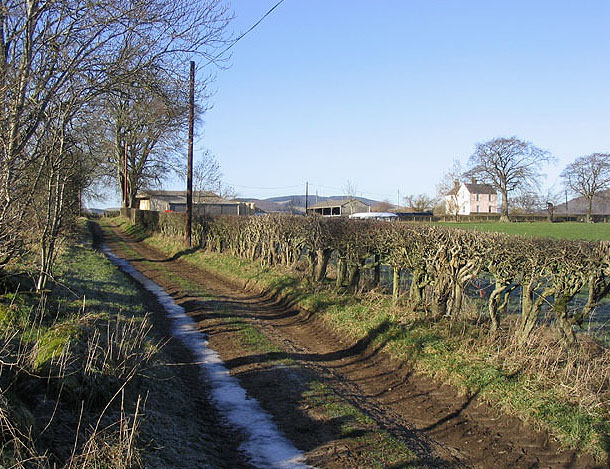 On a track to Broomilees Farm