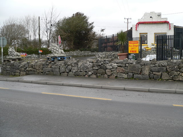 Lions For Sale, Kilcolgan