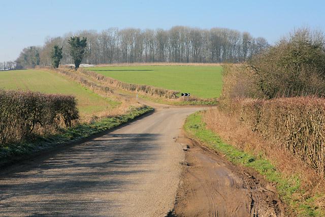 Laverstoke Lane at Brickkiln Wood