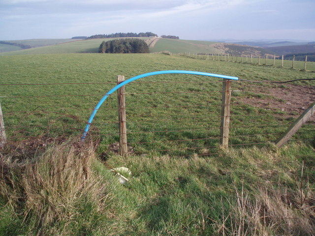 Electric Fence - Borders Style
