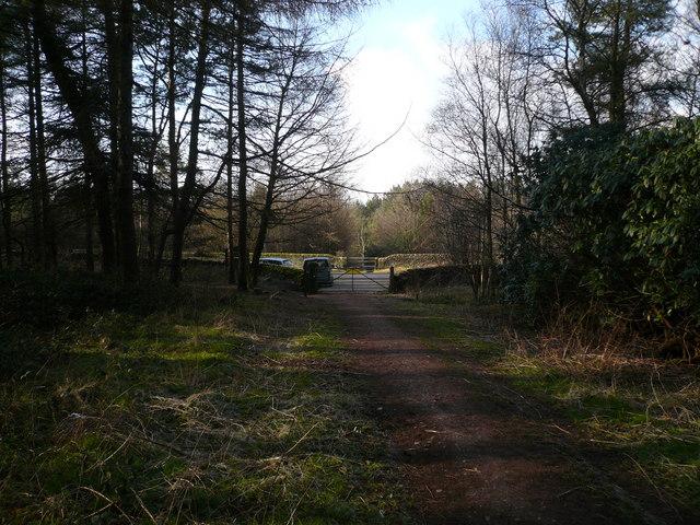 Farley Moor - Woodland Entrance