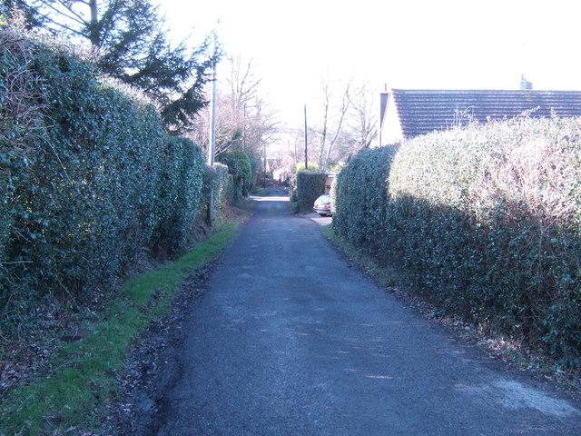 Buxted Wood Lane
