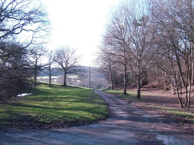 Scenic lane to Hole Farm
