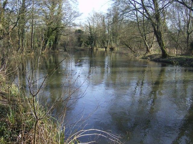 River Kennet near between Woolhampton and Aldermaston