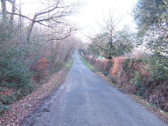 Nursery Lane