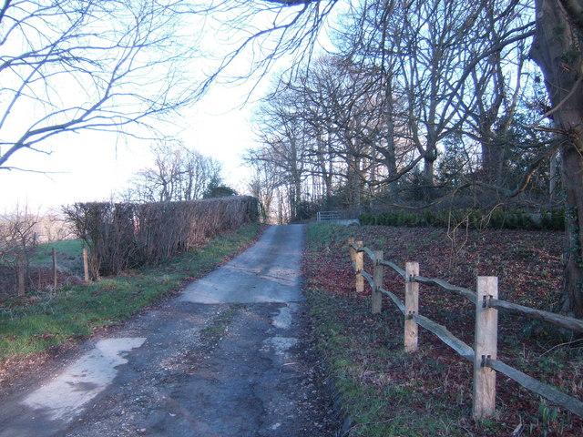Track to Allen's Farm