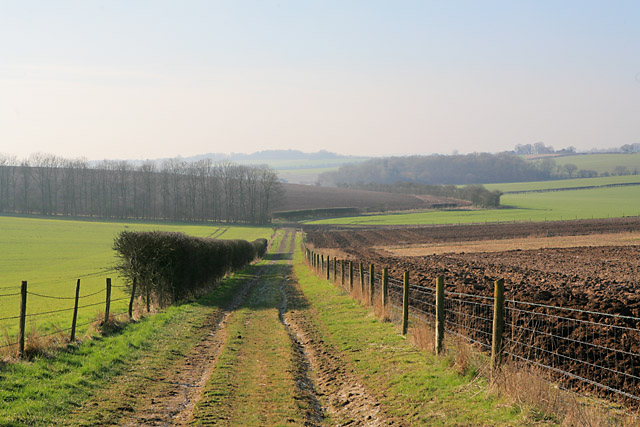 Bridleway west of Norton Wood