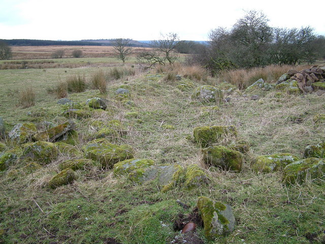 Burial Ground between Malling Farm and Nether Shannochill