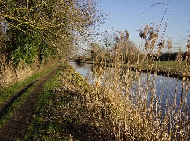 Kennet and Avon Canal near Thatcham