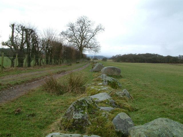 Boundary stones on edge of track