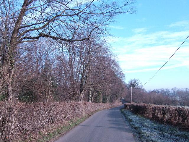 Ward's Lane
