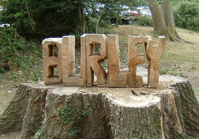 Burley in wood