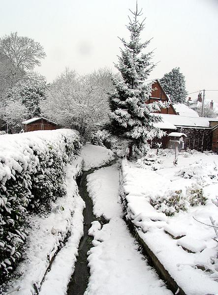 Snowy Stream: Woolhampton