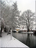 SU5766 : Woolhampton Village and Canal by Pam Brophy