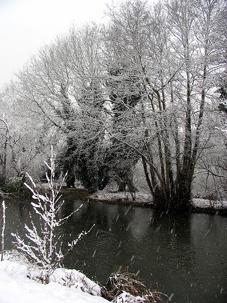 Snowing on the Canal: Woolhampton