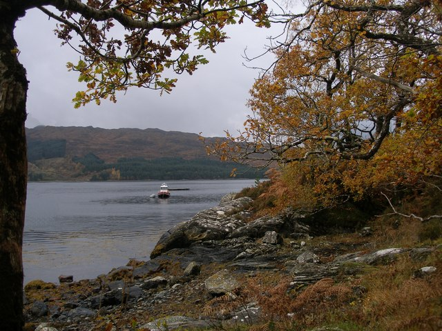 Autumn colours on the shore of Loch Sunart, Port na h-Uamha