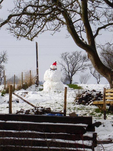 Snowman at Silver Street Farm