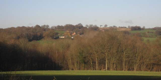 View towards Iden Green