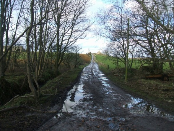 farm track off the Rattray Road