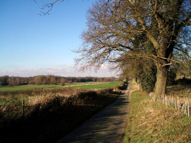 Hoe Road