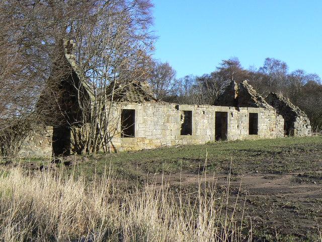 Coalpitden