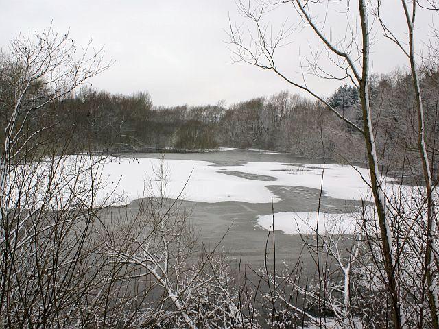 Ogston Reservoir - Northern tip in winter