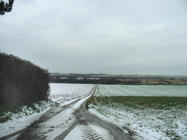 Track leading down to Undertrees Farm