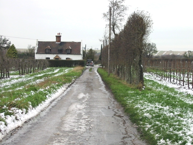 Road to Newborns Farm