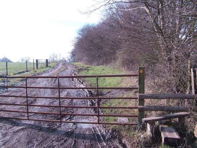 Footpath to Wadhurst