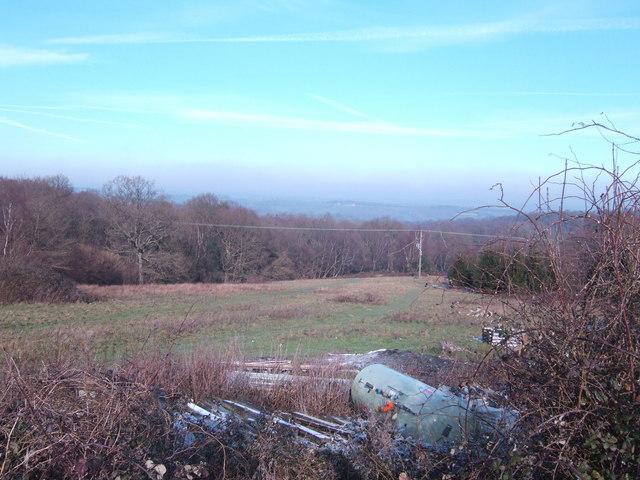 Rubbish dump and Wealden woodland
