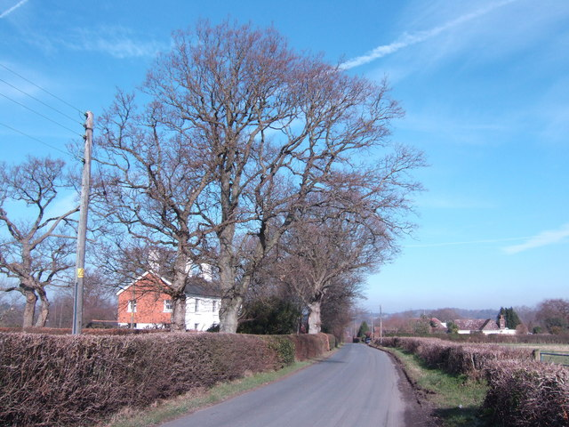 Battenhurst Road looking north