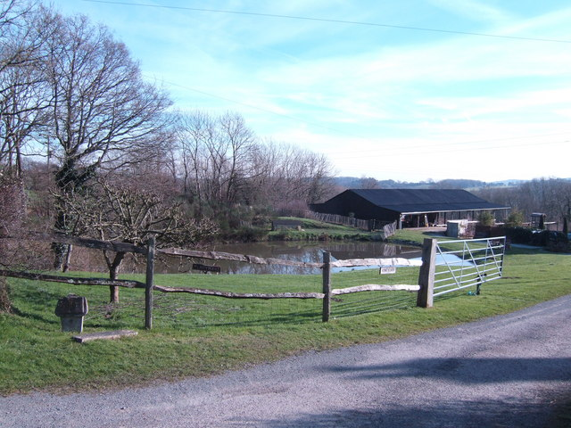 Pond at Perryman's Farm