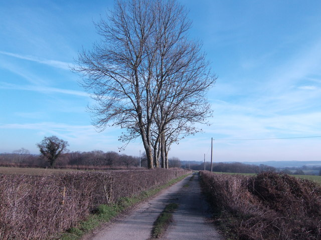 Track and footpath to Squibs Farm