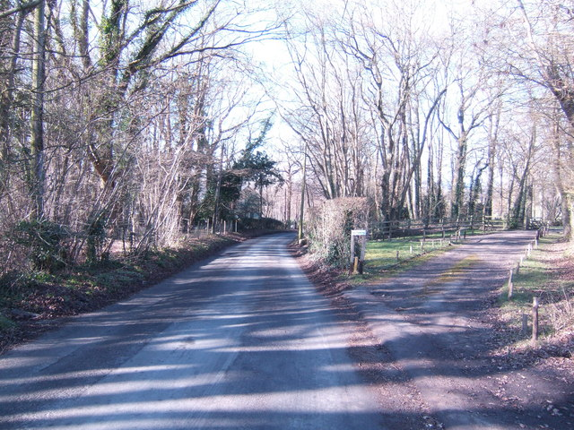 Lane to Hackwoods Farm