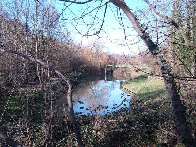 Pond by Canal Bridge