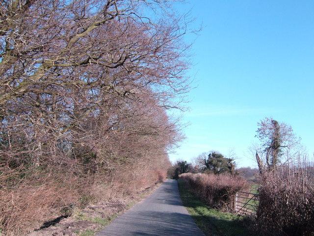 Borders Lane, near Underwood's Farm